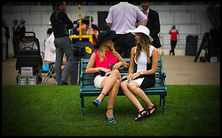 Ladies study the form on Ladies day at Royal Ascot 2013 Ascot, United Kingdom,<br /> Thursday, 20th June 2013<br /> Picture by Andrew Parsons / i-Images