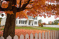 The beautiful colors of fall on a walk down Pleasant Street in Laconia.   (Karen Bobotas/for the Laconia Daily Sun)