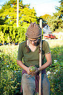 """The Southeast Urban Agricultural Cooperative, formerly known as the Sellwood Garden Club, working at one of their 5many garden plots throughout the city of Portland.  Pictured here is Friday Purington at the """"Allister Plot"""" which is one of 55 gardens in the Portland Metro area that their organization oversees."""