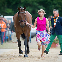 First Inspection - Luhmühlen CCI4* 2015