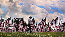 May 29, 2017 - Cincinnati, Ohio, U.S - A man make his way around the 800 flags on display as part of the Memorial Day events in Cincinnati,Ohio . That is part of the Field of Dreams Memorial event a the Arlington Memorial Gardens. (Credit Image: © Ernest Coleman via ZUMA Wire)