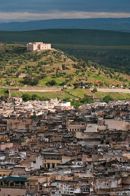 View of the medina in Fes