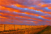 Rural landscape at sunset<br /> Grande Prairie<br /> Alberta<br /> Canada