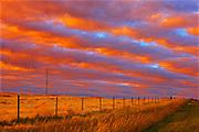 Rural landscape at sunset<br /> Grande Prairie<br /> Alberta<br /> Canada