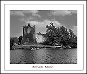 Ross Castle, home of 'The' O'Donoghue on the shores of Lough Leane in Killarney in County Kerry Ireland. The last fortress in Ireland to fall to Oliver Cromwell's army. <br /> <br /> Splendour Falls on Castle Walls is a poem by By Alfred, Lord Tennyson<br /> The splendour falls on castle walls<br />                 And snowy summits old in story:<br />          The long light shakes across the lakes,<br />                 And the wild cataract leaps in glory.<br /> Blow, bugle, blow, set the wild echoes flying,<br /> Blow, bugle; answer, echoes, dying, dying, dying.<br /> <br />          O hark, O hear! how thin and clear,<br />                 And thinner, clearer, farther going!<br />          O sweet and far from cliff and scar<br />                 The horns of Elfland faintly blowing!<br /> Blow, let us hear the purple glens replying:<br /> Blow, bugle; answer, echoes, dying, dying, dying.<br /> <br />          O love, they die in yon rich sky,<br />                 They faint on hill or field or river:<br />          Our echoes roll from soul to soul,<br />                 And grow for ever and for ever.<br /> Blow, bugle, blow, set the wild echoes flying,<br /> And answer, echoes, answer, dying, dying, dying.<br /> Picture by Donal MacMonagle - macmonagle.com