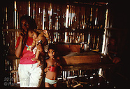 08: AMAZON JUNGLE HOMES
