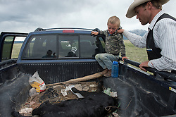 .Four year old Andy Anderson cries as his father prepares to skin a dead calf and graft it to another calf who lost its mother in an effort to get the new mother to accept it and save its life.  Ranching is tough business with most working 14-16 hour days in the calving season  in the Centennial Valley of Southwestern Montana, June 13, 2012. Spurred by growing consumer concern over meat's environmental impact and concerned about the long-term viability of their livelihood, a cohort of ranchers is trying to apply the understanding gleaned from the science of ecology to livestock management.