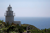 Cape Iro Saki, at the southern tip of the Izu Peninsula, has a saw-toothed shoreline, with its charm being its variety. It is a scenic spot, with its lighthouse and towering cliffs, a view of which you can enjoy from aboard a boat that tours around the cape.