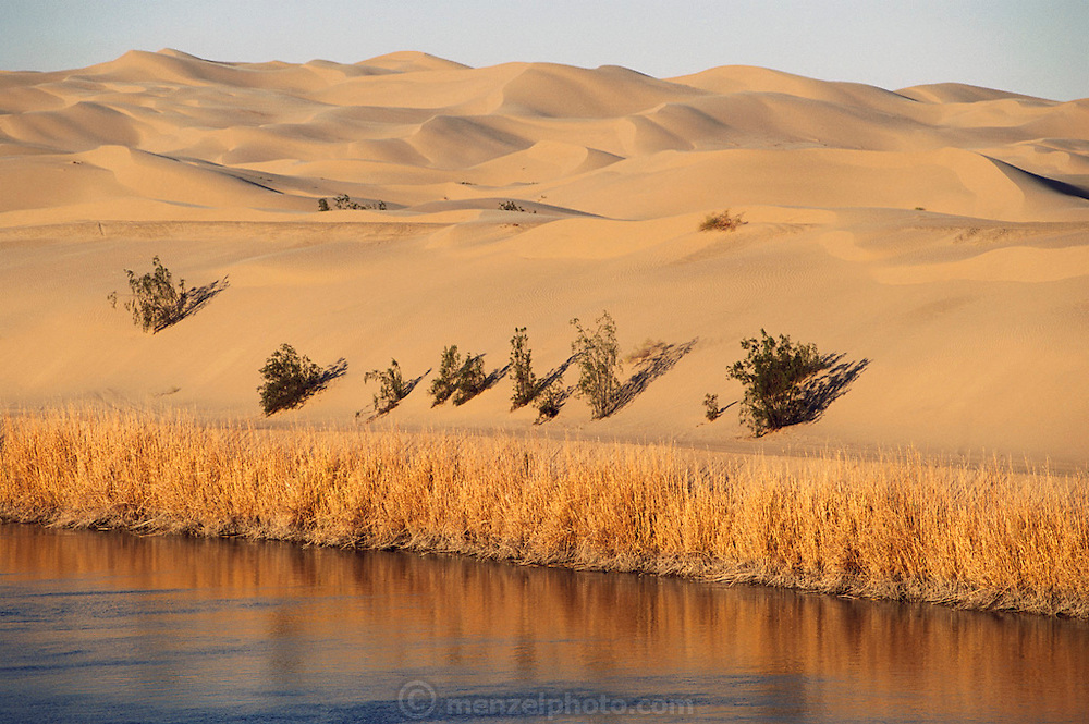 East of Imperial Valley. Imperial Sand dunes, California, with the All American Canal in the foreground.