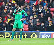 Watford v Bolton Wanderers 231113