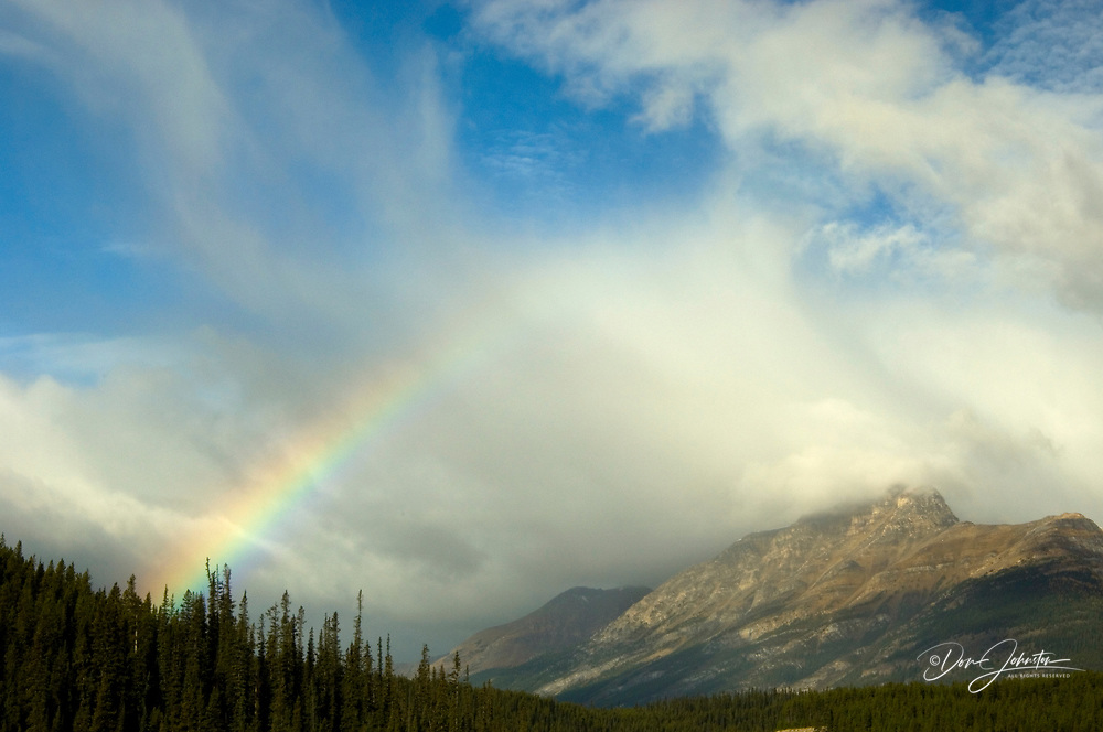 Rainbow and fall larches on mountainside, Banff National Park, Alberta, Canada