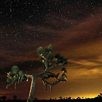 Lunar eclipse from Joshua Tree National Park, California.