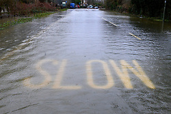 © Licensed to London News Pictures. 11/02/2014. Shepperton and Chertsey, UK. Chertsey Bridge Road.  Flooding in SHEPPERTON AND CHERTSEY in Surrey today 11th February 2014 after the River Thames burst its banks. The Environment Agency has issued 14 Severe Flood Warnings alone the Thames. Photo credit : Stephen Simpson/LNP