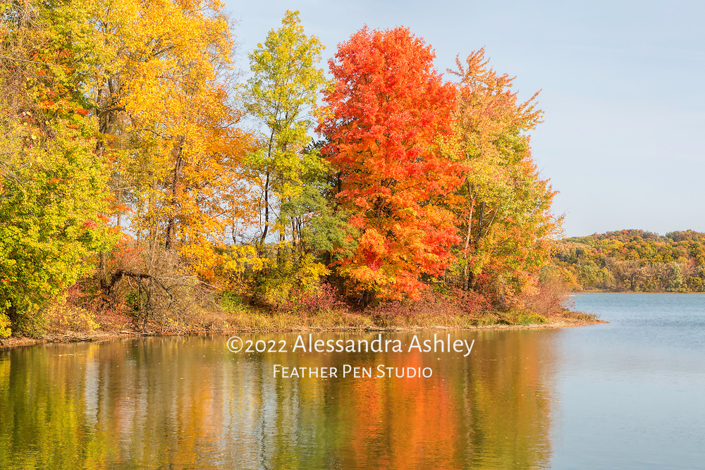 Peak autumn foliage colors on the Clear Fork Reservoir, north central Ohio.