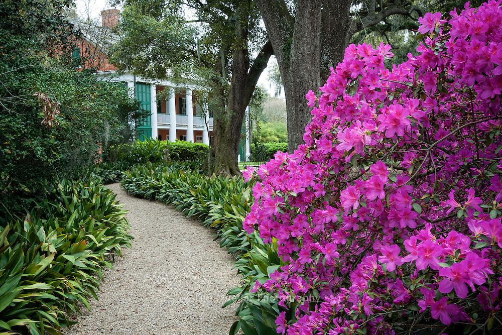 The historic Shadows-on-the-Teche antebellum home is located along New Iberia, Louisiana's main street.