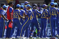 © Licensed to London News Pictures. 08/03/2012. Adelaide Oval, Australia. The Sri Lankan team in a huddle celebrate the wicket of Michael Hussey during the One Day International cricket match final between Australia Vs Sri Lanka. Photo credit : Asanka Brendon Ratnayake/LNP