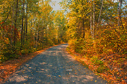 Country road in autumn colors near Middle Lake<br />