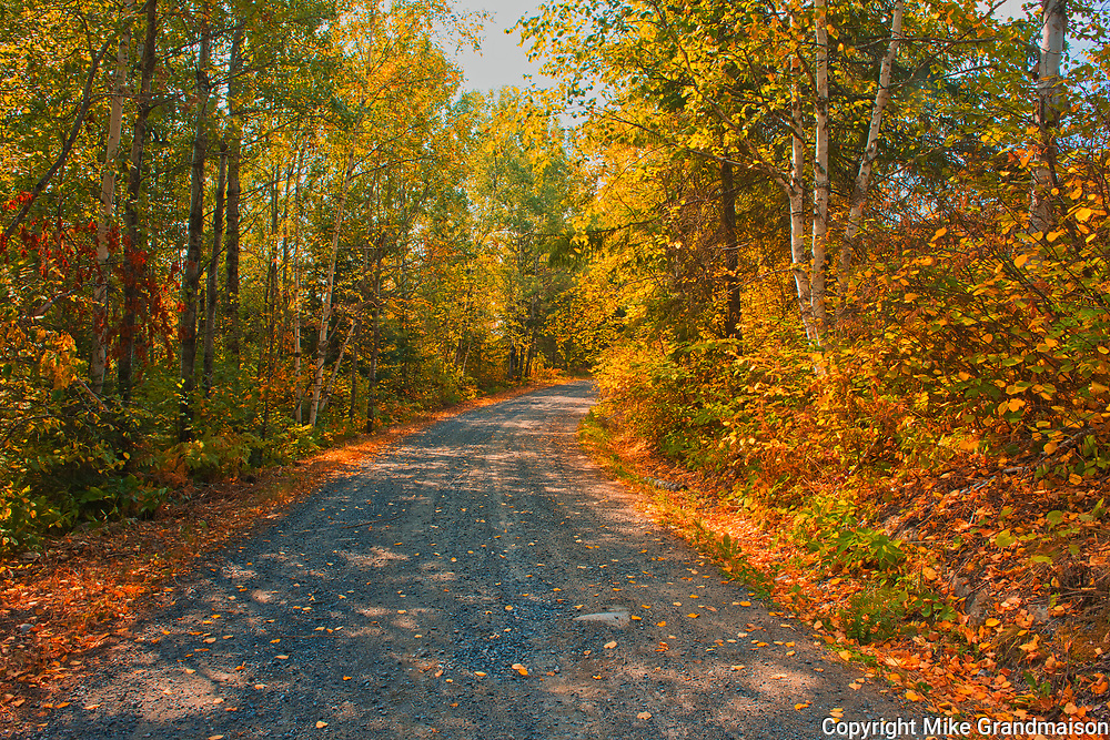 Country road in autumn colors near Middle Lake<br />Kenora<br />Ontario<br />Canada