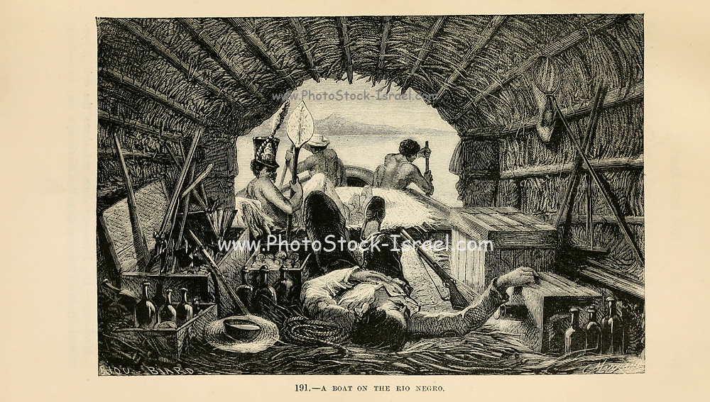 engraving on wood From The human race by Figuier, Louis, (1819-1894) Publication in 1872 Publisher: New York, Appleton
