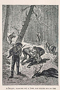 A Bullet, Glancing off a tree has killed him from the book ' Mistress Branican ' by Jules Verne, illustrated by Leon Benett. The story begins in the United States, where the heroine, Mistress Branican, suffers a mental breakdown after the death by drowning of her young son. On recovering, she learns that her husband, Captain Branican, has been reported lost at sea. Having acquired a fortune, she is able to launch an expedition to search for her husband, who she is convinced is still alive. She leads the expedition herself and trail leads her into the Australian hinterland. Mistress Branican (French: Mistress Branican, 1891) is an adventure novel written by Jules Verne and based on Colonel Peter Egerton Warburton and Ernest Giles accounts of their journeys across the Western Australian deserts, and inspired by the search launched by Lady Franklin when her husband Sir John Franklin was reported lost in the Northwest Passage. Translated by A. Estoclet, Published in New York, Cassell Pub. Co. 1891.