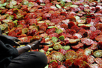 Niger, Agadez, Tidene, 2007. Women slice the many tomatoes that are produced here and put them out to dry in the sun.