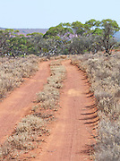 Dirt track, Gawler Ranges National Park, South Australia, Australia