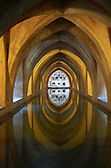 The Baths of Dona Maria de Padill, part of the original Almohad garden that is now below the Alcazar, Alcazar of Seville, Spain. . The Royal Alcázars of Seville (al-Qasr al-Muriq ) or Alcázar of Seville, is a royal palace in Seville, Spain. It was built by Castilian Christians on the site of an Abbadid Muslim alcazar, or residential fortress.The fortress was destroyed after the Christian conquest of Seville The palace is a preeminent example of Mudéjar architecture in the Iberian Peninsula but features Gothic, Renaissance and Romanesque design elements from previous stages of construction. The upper storeys of the Alcázar are still occupied by the royal family when they are in Seville. <br /> <br /> Visit our SPAIN HISTORIC PLACES PHOTO COLLECTIONS for more photos to download or buy as wall art prints https://funkystock.photoshelter.com/gallery-collection/Pictures-Images-of-Spain-Spanish-Historical-Archaeology-Sites-Museum-Antiquities/C0000EUVhLC3Nbgw <br /> .<br /> Visit our MEDIEVAL PHOTO COLLECTIONS for more   photos  to download or buy as prints https://funkystock.photoshelter.com/gallery-collection/Medieval-Middle-Ages-Historic-Places-Arcaeological-Sites-Pictures-Images-of/C0000B5ZA54_WD0s