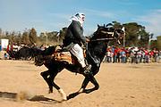 Israel, Negev, Beduin horse racing in the desert