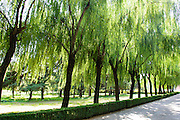 China, Beijing, Ming Dynasty Tombs, Changling Tomb, Spirit Way