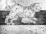 Constellation of Leo from Johannes Bayer 'Uranometria' Ulm 1723. Copperplate engraving