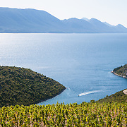 A view overlooking fruit crops and the mountains along the coast in southern Croatia.