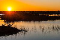 US, Florida, Merritt Island National Wildlife Refuge, Black Point Wildlife Drive. Sunset.