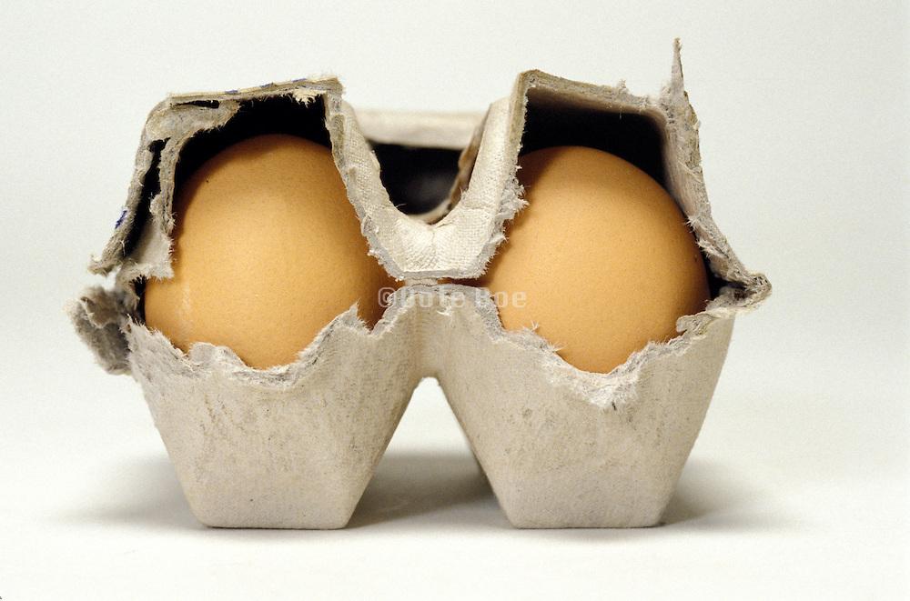 eggs in an carton