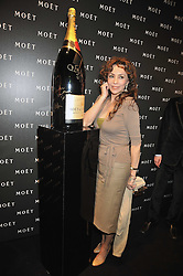 MARIE HELVIN at the Moet & Chandon Tribute to Cinema party held at the Big Sky Studios, Brewery Road, London N7 on 24th March 2009.