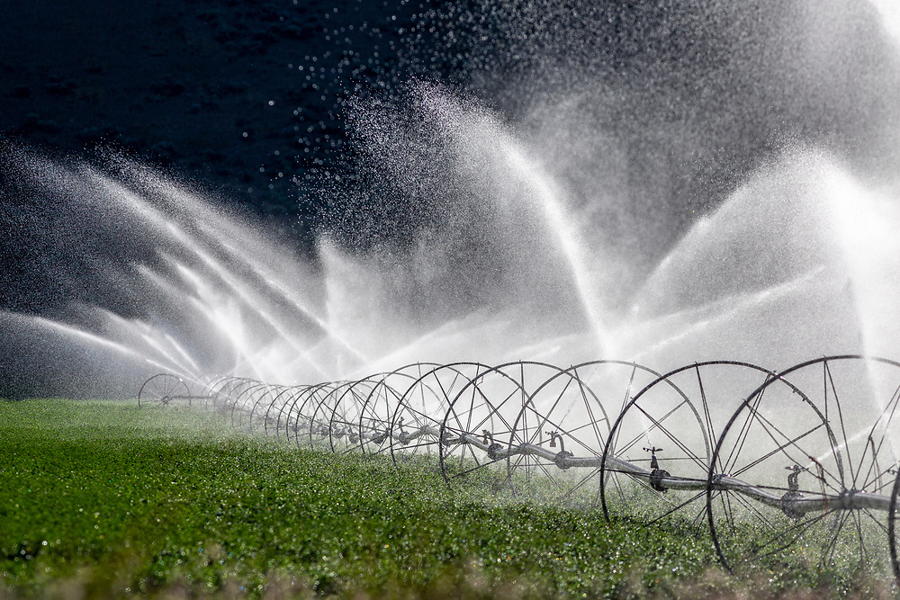 Open Edition<br /> Sprinklers spraying water over alfalfa hay fields near Picabo Idaho in the American West against a dark hillside