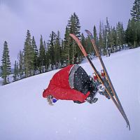 SKIING, Ben Wiltsie (MR) jumps in half pipe,  terrain park, Mammoth Mt. Ski Area, Calif.