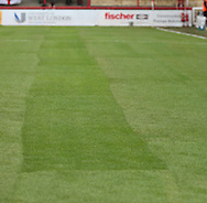 The new pitch during the Sky Bet Championship match between Brentford and Reading at Griffin Park, London, England on 29 August 2015. Photo by Matthew Redman.