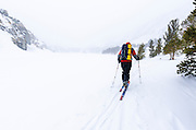 Backcountry skier in a white-out, John Muir Wilderness, Sierra Nevada Mountains, California  USA