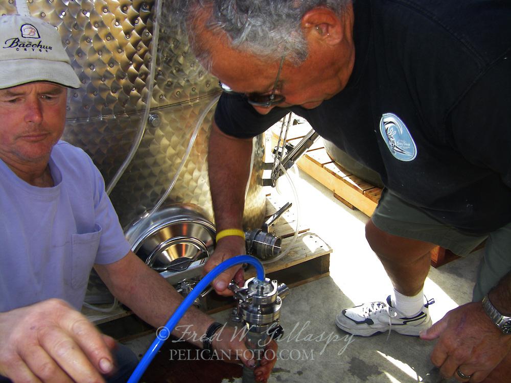 Wine Bottling 0693