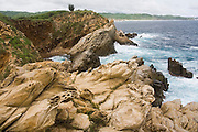 Waves crash into rocky cliffs along the Pacific coast near the village of Mazunte, Oaxaca, Mexico on July 7, 2008. Sandstone in the foreground exhibits unusual forms caused by wind erosion.
