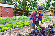 Chef/Owner Stacey Givens at The Side Yard Farm and Kitchen in Portland, OR, USA