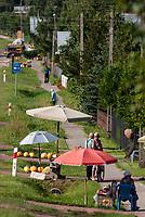 31.07.2016 wies Ryboly woj podlaskie N/z sprzedaz warzyw i owocow przy DK 19 Bialystok - Lublin fot Michal Kosc / AGENCJA WSCHOD