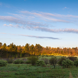 A field in Durham, New Hampshire.