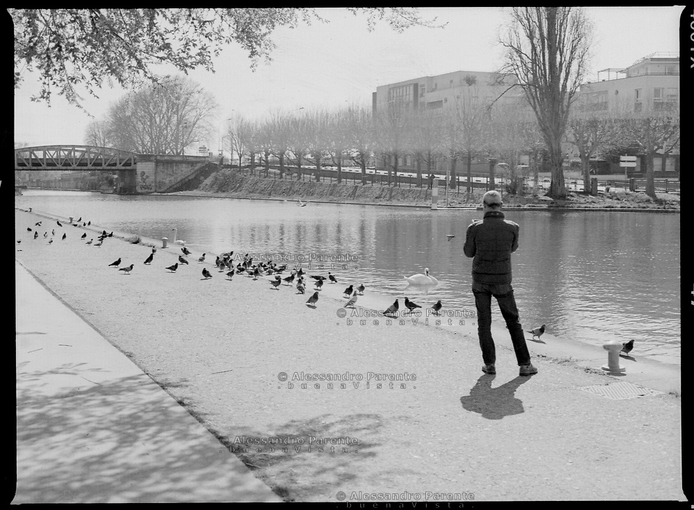 Aubervilliers,Seine Saint Denis. Man taking a picture of two swans.