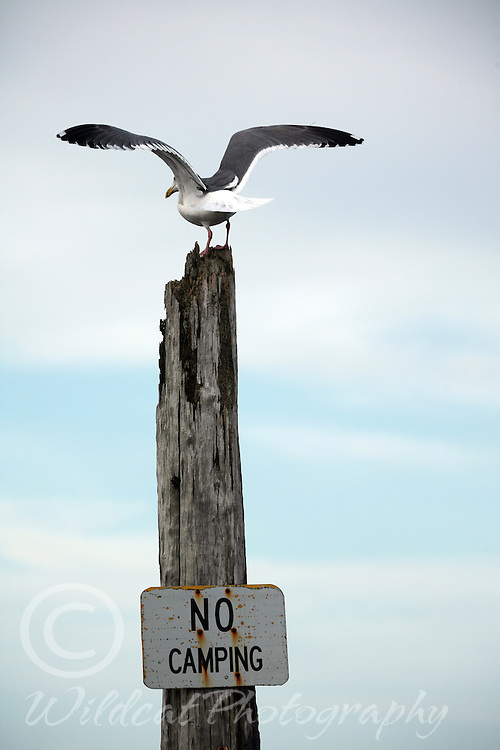 No camping here!