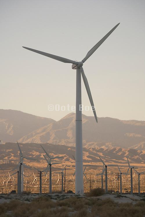 field of wind turbines outside Palm springs California USA