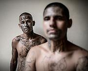 Retratos de Pandilleros de la Carcel San Francisco Botera