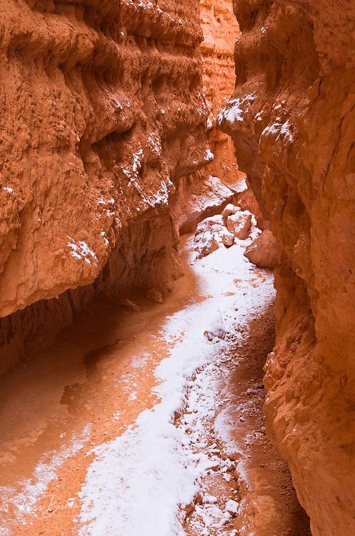 Fresh powder along Wall Street, Bryce Canyon National Park, Utah