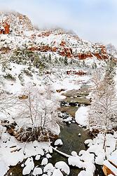 Oak Creek Canyon under a fresh magical snow.