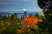 Portland, Oregon skyline from the Portland Japanese Gardens.<br /> <br /> Portland, officially the City of Portland, is the largest and most populous city in the U.S. state of Oregon and the seat of Multnomah County. It is a major port in the Willamette Valley region of the Pacific Northwest, at the confluence of the Willamette and Columbia rivers. Approximately 2.4 million people live in the Portland metropolitan statistical area (MSA), making it the 25th most populous in the United States. Named after Portland, Maine, the Oregon settlement began to be populated in the 1830s near the end of the Oregon Trail. Its water access provided convenient transportation of goods, and the timber industry was a major force in the city's early economy. At the turn of the 20th century, the city had a reputation as one of the most dangerous port cities in the world, a hub for organized crime and racketeering. After the city's economy experienced an industrial boom during World War II, its hard-edged reputation began to dissipate. Beginning in the 1960s, Portland became noted for its growing progressive political values, earning it a reputation as a bastion of counterculture.<br /> <br /> The Portland Japanese Garden is a traditional Japanese garden occupying 12 acres, located within Washington Park in the West Hills of Portland, Oregon, United States. It is operated as a private non-profit organization, which leased the site from the city in the early 1960s. Stephen D. Bloom has been the chief executive officer of the Portland Japanese Garden since 2005.